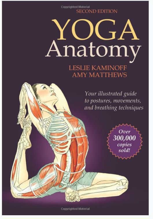 Yoga Anatomy por Leslie Kaminoff y Amy Matthews Review